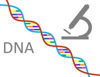 Projeto realizará 32 exames de DNA em Barra do Garças, inscrições devem ser feitas até o dia 1 de dezembro no CRAS